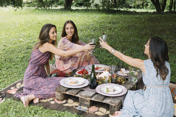Women clanging glasses on picnic