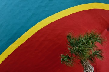 Palm tree blowing in the wind with a background of red, blue, and yellow colors.