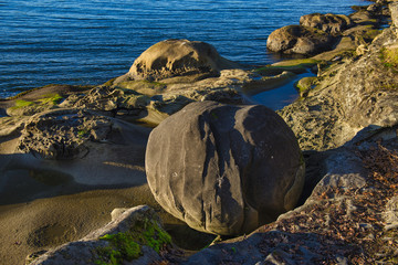 Detail of rock formation at Jack Point in Nanaimo, British Columbia.