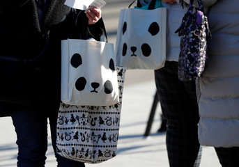 Visitors holding bags featuring giant panda wait for starting the public debut of female baby panda Xiang Xiang at Ueno Zoological Gardens in Tokyo