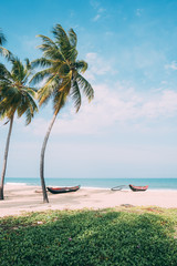 Fishing boats in a quiet beach with palm trees