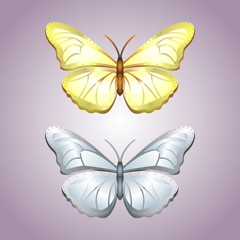 Gold and silver butterflies