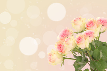 pink yellow roses on an abstract background