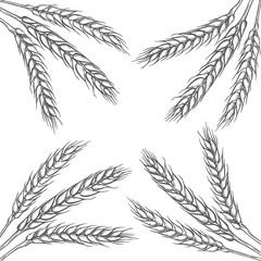 illustration of wheat