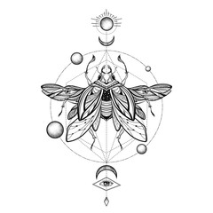 Beetle bug tattoo drawing. Scarab bug illustration