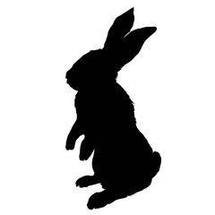 Bunny rodent black silhouette animal