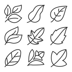 Leaves icon set. Collection of leaf logo design for green, eco, organic, food, beauty, health care and beauty. vector illustration .