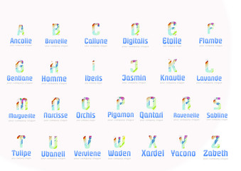 Alphabet Geometric lines and different colors,Template for your company