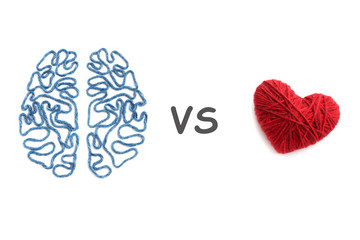 Brain, heart and inscription VS on white background