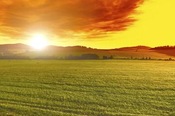 Summer beautiful landscape at sunset,green field, Czech Republic