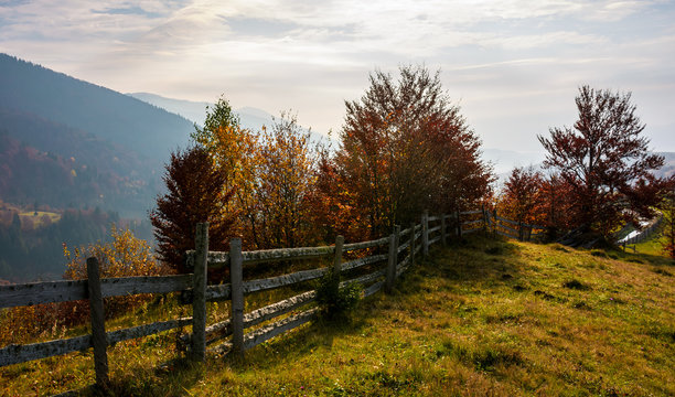 fence along the grassy hillside. beautiful autumn scenery in mountains. calm rural life concept