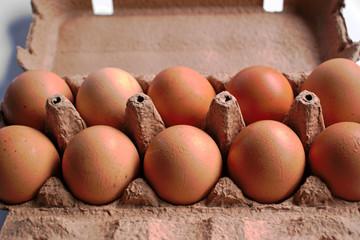 Closeup of brown chicken eggs in a carton