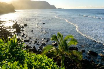 Sunset at Tropical Coast - Sunset view of tropical coast of Kauai, Hawaii, USA.