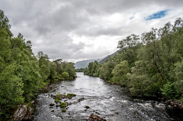 A valley with river-lined trees in the Scottish area called Glen Afric