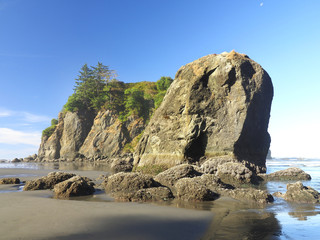 Wall Mural - Low Tide at Ruby Beach, Washington