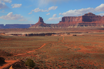 Road through remote desert terrain of Canyonlands