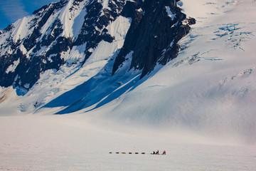 Dogsledding on a glacier in Juneau Alaska