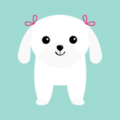 Maltese dog puppy White lapdog. Animal icon set. Cute cartoon character. Pet animal collection. Adopt concept. Flat design. Blue background. Isolated.