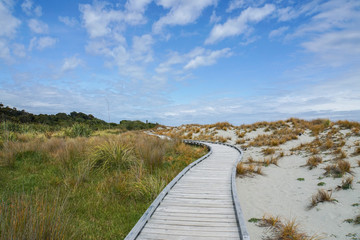 wooden walkway along the sand beach and grass
