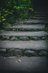 Old vintage stone staircase natural pathway in forest at Thailand Asia travel