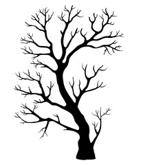 black silhouette of a tree