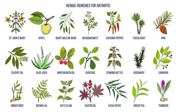 Best herbal remedies for arthritis