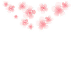 Light Pink flowers isolated on White background. Apple-tree flowers. Cherry blossom. Vector
