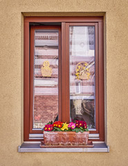 wooden frame window with flowers on light brown wall