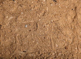 Brown Sand Background