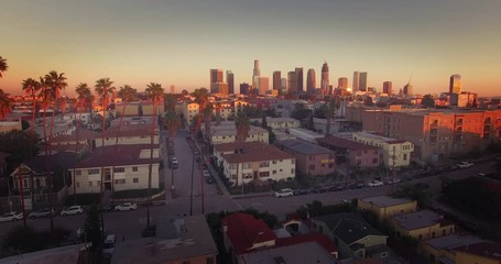 Fototapete - Pan across downtown Los Angeles skyline row of palm trees Aerial view 4K UHD
