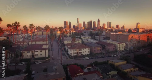 Fotobehang Pan across downtown Los Angeles skyline row of palm trees Aerial view 4K UHD