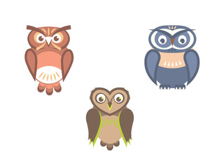 Vectorset of owl birds flat illustration