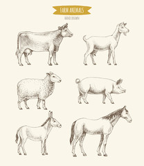 Farm animals collection. Vector illustration of hand drawn farm animals in retro style, including cow, goat, sheep, pig, donkey and horse, isolated on background.