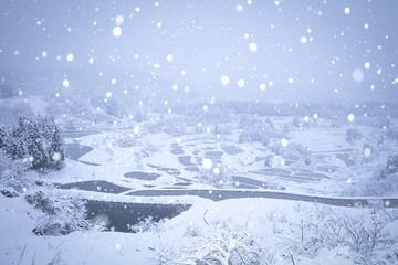 星峠の棚田 雪景色