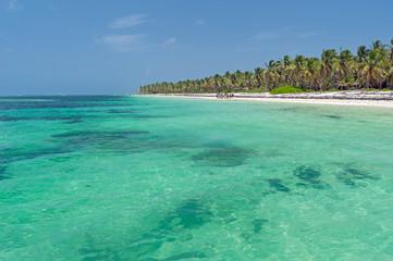 Tropischer Strand bei Punta Cana, Dominikanische Republik.