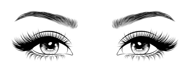 Hand-drawn woman's sexy luxurious eye with perfectly shaped eyebrows and full lashes. Idea for business visit card, typography vector. Perfect salon look.