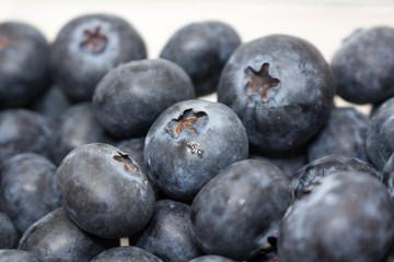 Blueberries Together
