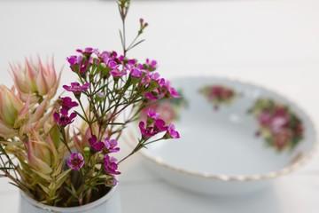 Flower with modern bowl