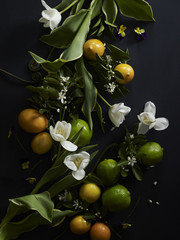 Still-Life composition with citrus, ferns, pansies, tulips, limes, meyer lemons, orange blossoms