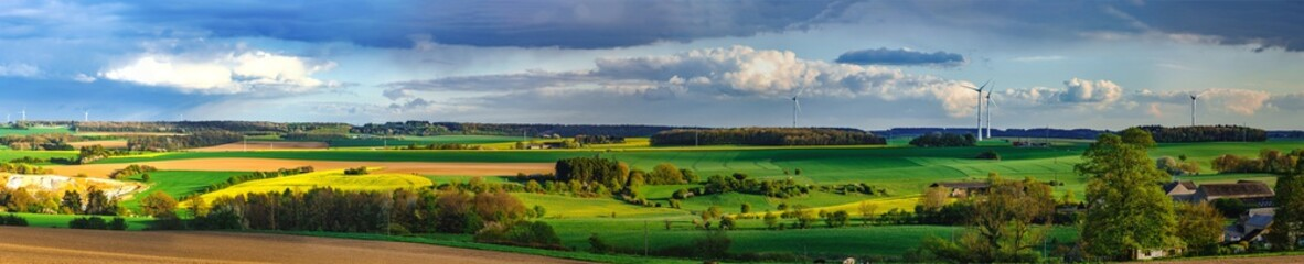 Colorful fields in belgian countryside panoramic view with windmill on horizon