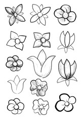 Various of Doodle Flowers
