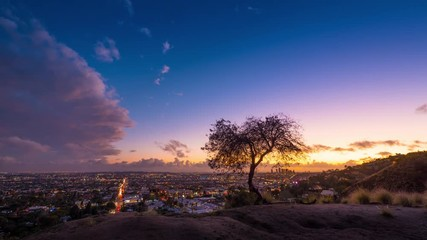 Fotobehang - Storm clouds passing Los Angeles cityscape at sunset lone tree 4K timelapse