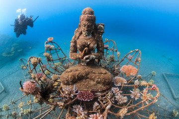 Artificial reef Coral Goddess in Pemuteran, Bali, Indonesia