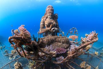 Artificial reef Coral Goddess in Pemuteran, Bali, Indonesia