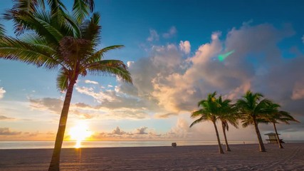 Fotobehang - Beautiful Florida sunrise with palm trees and beach in foreground.  Timelapse.