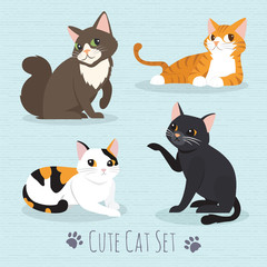 Cute Cats Breed