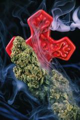 Detail of dried cannabis nugs (God bud marijuana strain) isolated over black background