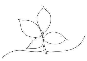 one line drawing of isolated vector object - tree leaf