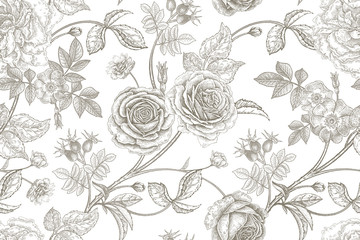 Seamless pattern with rose flowers.