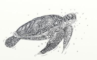 a realistic turtle sea turtle,